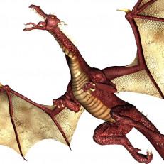 kuvassa lohikäärme