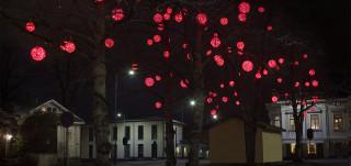 Punaisia valopalloja puiden oksilla.